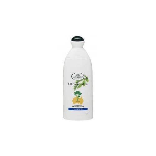 LAngelica Shampoo Per Capelli Antiforfora Con Tea Tree Oil 250 Ml