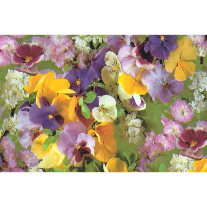 E-plast rotolo tovaglia 20 mt h 140 cm fiorellini