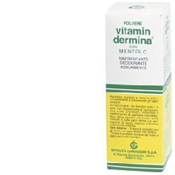 Vitamindermina polvere ment 100 g