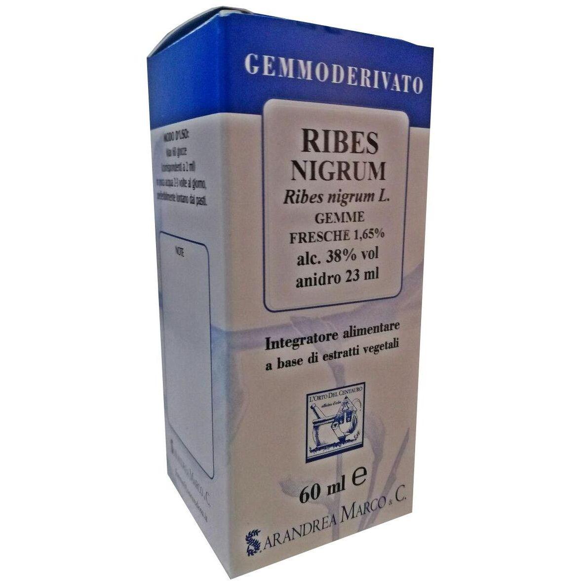 Ribes Nigrum Globosplazacom